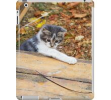 Small kitten playing in the autumn park iPad Case/Skin