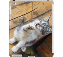 Small cute kitten playing with a twig in the street iPad Case/Skin