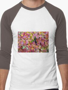 Background of bright red and yellow leaves of a bush Men's Baseball ¾ T-Shirt