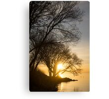 Early Gold Through the Willow Branches - A Sunrise on the Shore of Lake Ontario Canvas Print