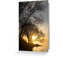 Early Gold Through the Willow Branches - A Sunrise on the Shore of Lake Ontario Greeting Card