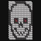 Skully by Ben Herman