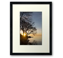 On Fire - Sunrise Through The Willows Framed Print