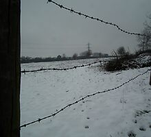 Snow Beyond The Wire by mike  jordan.