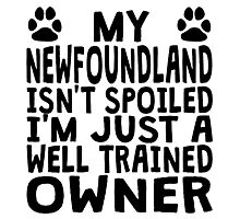 Well Trained Newfoundland Owner Photographic Print