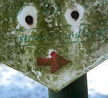 Funny Face - JUSTART © by JUSTART