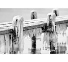 Freezing ..... Photographic Print