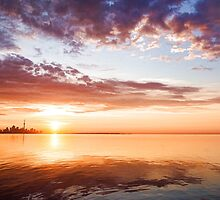 Pink and Gold Morning Zen - Toronto Skyline Impressions by Georgia Mizuleva