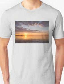 Golden Pink Toronto Sunrise T-Shirt