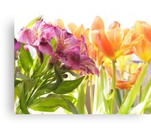 Going By... Alstroemeria and Tulips Canvas Print