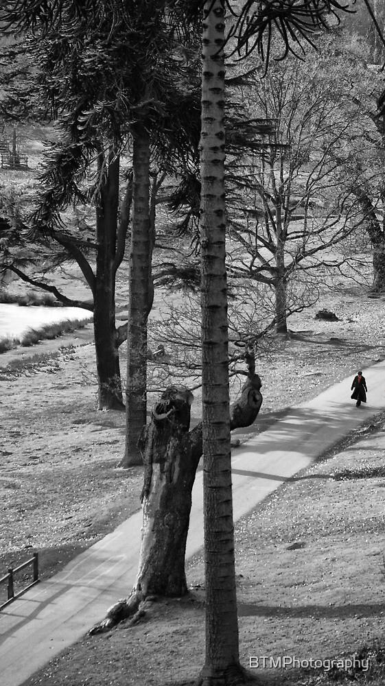 Winter Walk by BTMPhotography