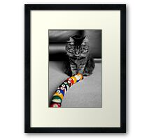 Trick Shot Framed Print