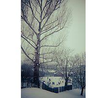 Bethune Park, Friern Barnet. Photographic Print