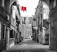 Venetian Lane-Venice, Italy by Deborah Downes