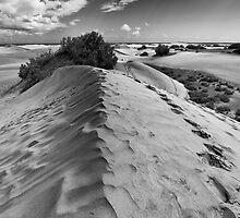 Dune Walk 1 by Rupert Sargeant
