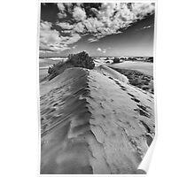 Dune Walk 1 Poster