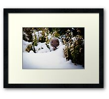 The Abominable Sackboy Framed Print