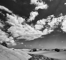 Dune Walk 3 by Rupert Sargeant