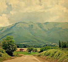 Italian Country Road-Umbria, Italy by Deborah Downes