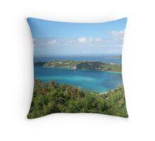 Caribbean Cruise Throw Pillow