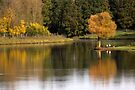 Autumn Reflection by Jo Nijenhuis