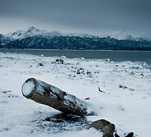 Homer Spit by mikewheels