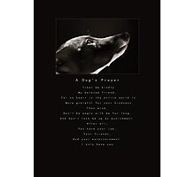 A Dog's Prayer Photographic Print