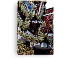 Dragon Face Off Canvas Print