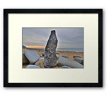 Dorset: Fossil Art Framed Print