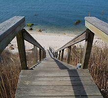 The Beach Stairs by John  Kapusta