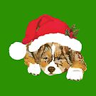 Red Merle Christmas Puppy in a Santa Hat by Barbara Applegate