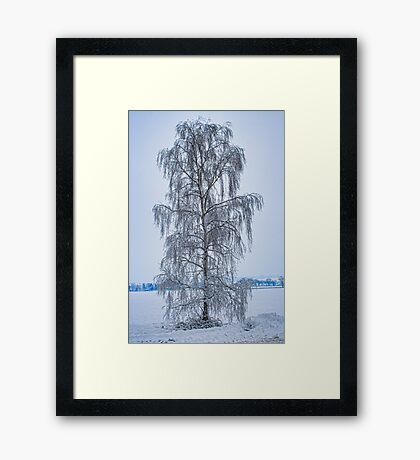 The Tree At Fright Corner Framed Print