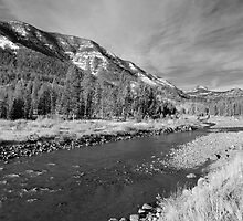Shoshone River near Yellowstone by North22Gallery