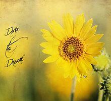 Dare To Dream by Darren Fisher