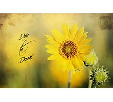 Dare To Dream Photographic Print