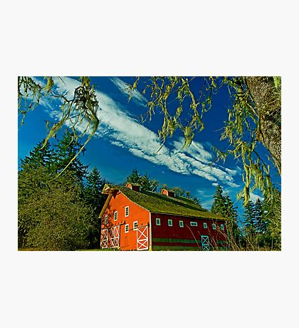 My Red Barn Photographic Print