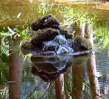 natural rock fountian waterscape by richair