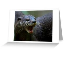 Oriental small Clawed Otter Greeting Card
