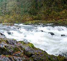 Moulton Falls on the Lewis River by North22Gallery