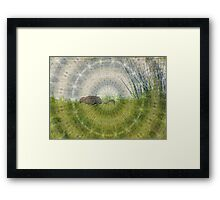 Miracle of Planet Earth Framed Print