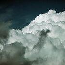 Great White Nimbus by Sharon Woerner