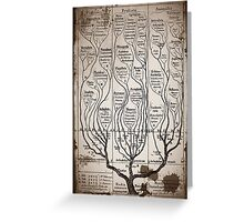Tree Chart Plantae Protista and Animali Greeting Card