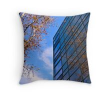 Autumn reflections. Throw Pillow
