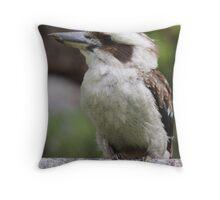 Kookaburra Sitting Throw Pillow