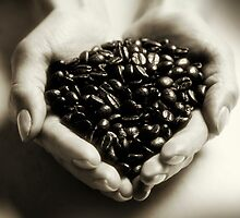 Fresh Coffee Beans by Andrew Bret Wallis