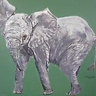 Elle the baby elephant by Cathacat