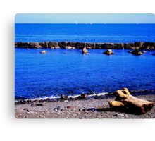 Lost on the Shore Canvas Print