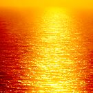 Le Roi Soleil  . made in Brown Sugar . Views (89) favorited by (2) Thx! by © Andrzej Goszcz,M.D. Ph.D