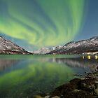 Aurora Reflection by Frank Olsen