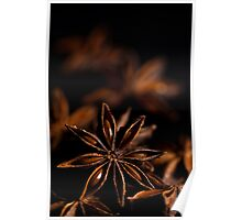 Star Anise Study Poster